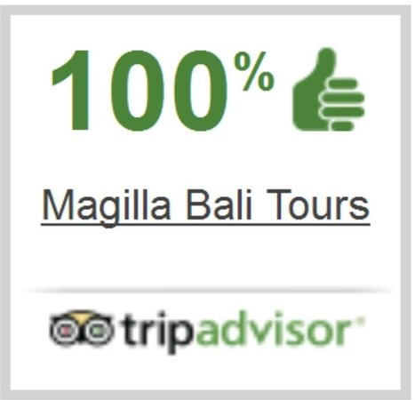 tumbs picture of magilla bali tours kuta tripadvisor