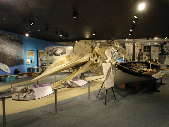 New Bedford Whaling Museum: Whale skeleton and boat