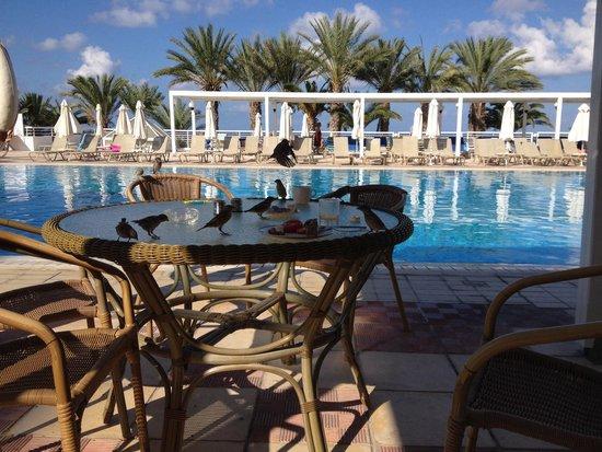 Queen's Bay Hotel: Завтрак для всех...
