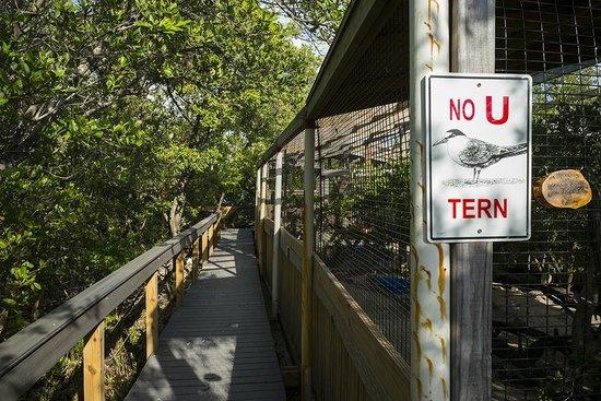 Florida Keys Wild Bird Rehabilitation Center: Boardwalk