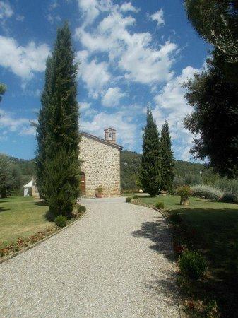 Villa San Crispolto: The first glimpse of VSC