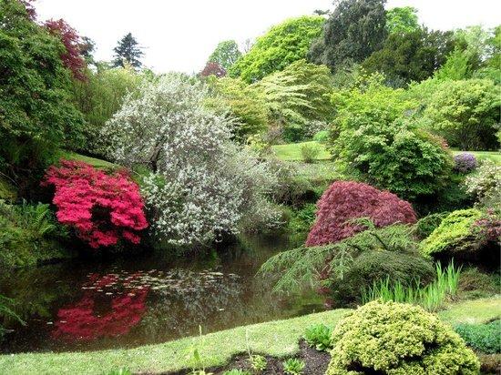Mount Stuart House gardens