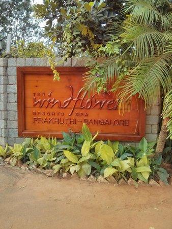 The Windflower Prakruthi Bangalore: Entrance