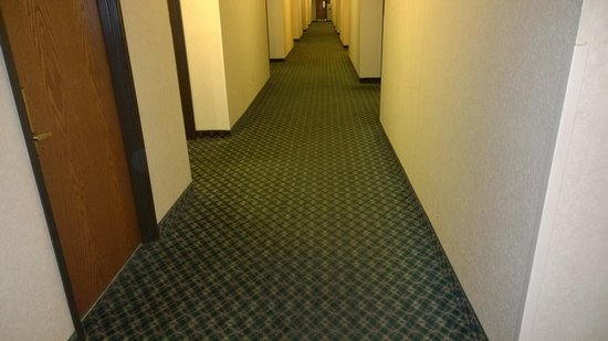 Quality Inn Wright Patterson: stained hallways
