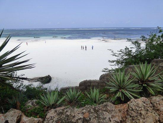 Baobab Beach Resort & Spa: gorgeous beach!
