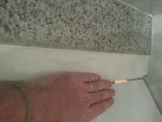 إيفا كونتيننتال هوتل: hair in bathroom