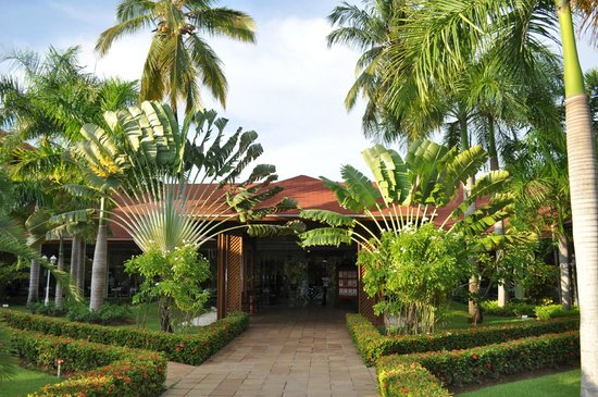 Hotel gardens - Picture of Grand Palladium Palace Resort Spa ...