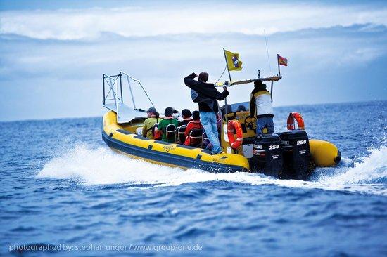 Bussard & Inia Ocean Explorer Tazacorte
