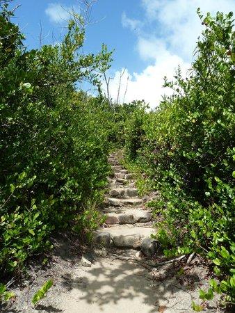 Curieuse Island : Path over the island