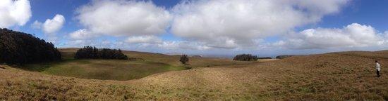 Maunga Terevaka : Vista desde la cima de Terevaka