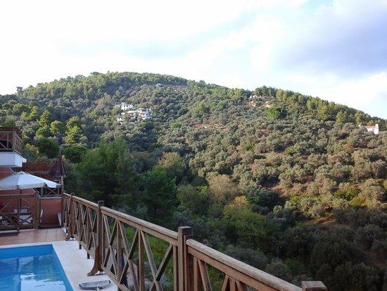 Skiathos Gea Villas: left hand view from pool