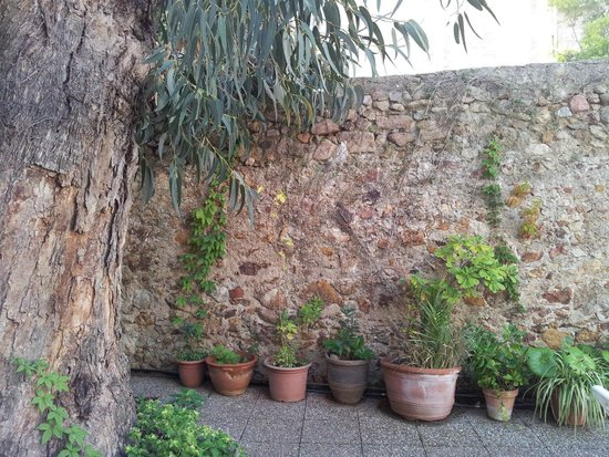 Hotel Sant March : garden area