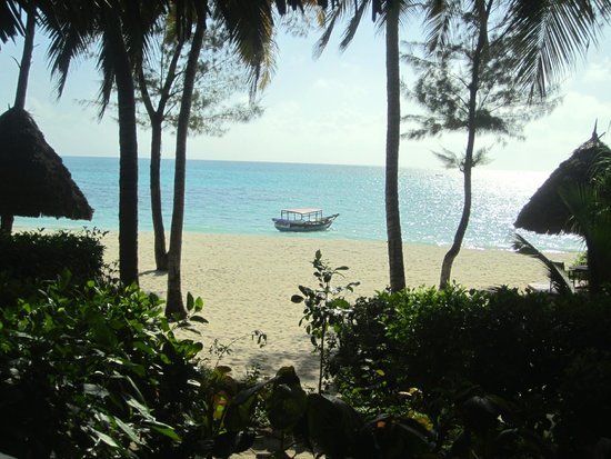 Pongwe Beach Hotel: View from the restaurant
