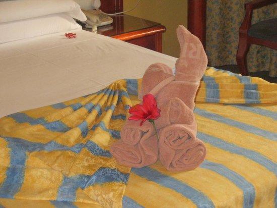 """ريو بيلبلايا - أول إنكلوسيف: a towel """"swan"""" on our bed"""