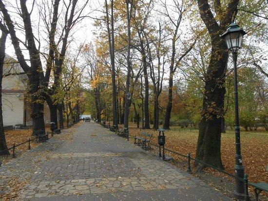 Planty Park: o parque