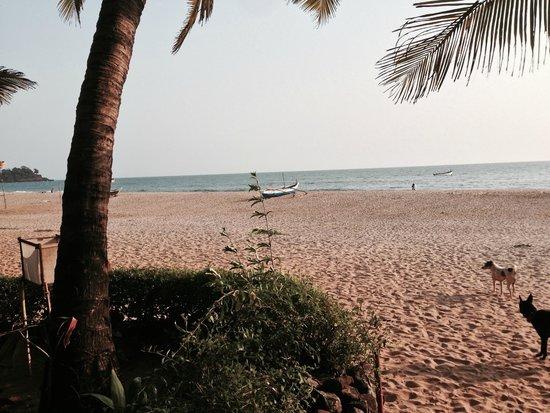 home Beachfront Restaurant & Hotel: Patnem beach view from Home