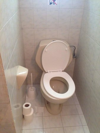 Lemon Tree Apartments: Broken toilet seat. Always smelt bad and very unhygienic having to leave the toilet roll on the