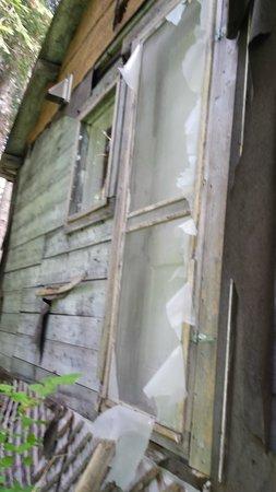 Historic Pittston Farm: back of the cabin