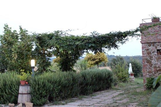 Agriturismo Santa Maria : dettaglio giardino