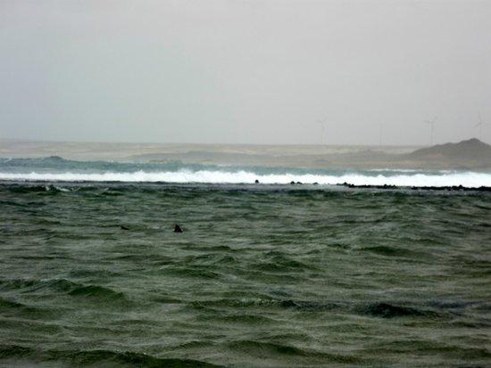 L'Alambic Cabo Verde