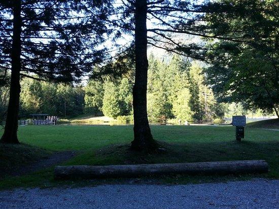 Silver Lake Park: Park area