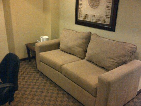 Holiday Inn Hotel & Suites Zona Rosa : Una pequeña sala-recepcion en la habitación