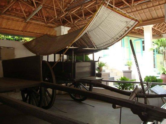 Perdana Botanical Garden: 公園内自由に見学できるものの一つ。
