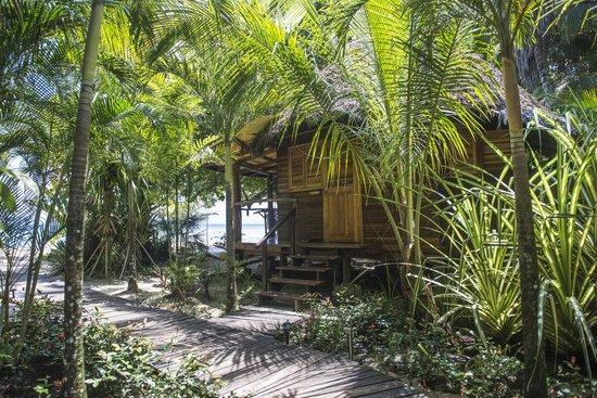 Casa Cayuco : Pelicano from Boardwalk