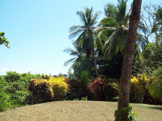 Casa Bambu Resort: Grounds