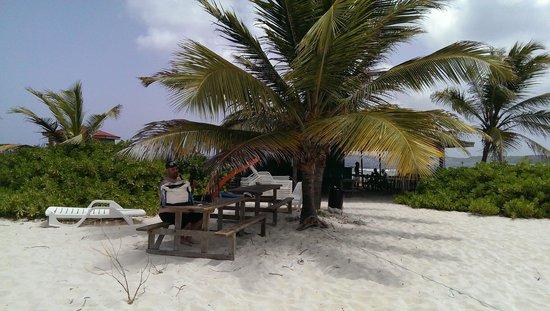 Simpson Bay (ทะเลสาบซิมป์สัน เบย์), เซนต์มาร์ติน / ซินท์มาร์เทิน: Some of the picnic tables on the island