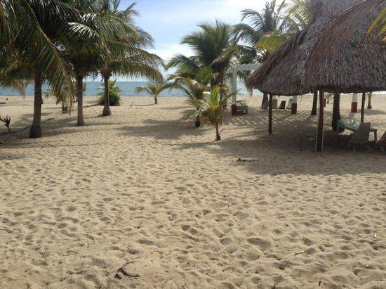 Beach view from Miramar Apartments