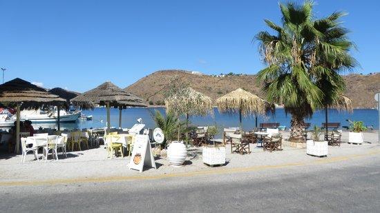 Captain's House Hotel: Вид из отеля на море