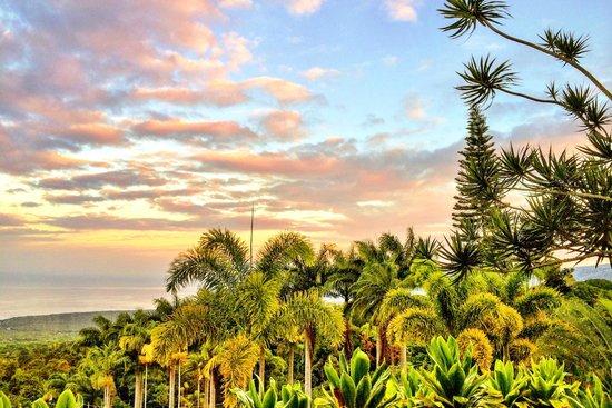 Aloha Guest House: Sunrise