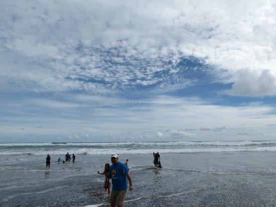 Piha Beach: Beach