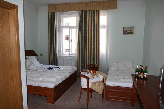 Hotel U Divadla : The room