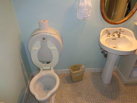 Holbrooke Hotel : Funky Toilette - A Highlight