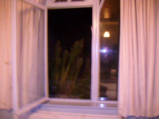 Hotel Botanique: camera tripla ma anche quintupla con finestra panoramica