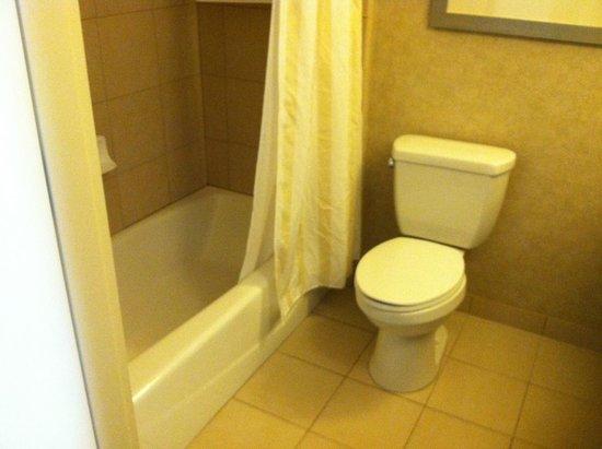 Hilton Garden Inn Fargo: Clean bathroom