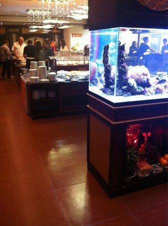Vina Wok: Un bel aquarium avec Nemo et dorine
