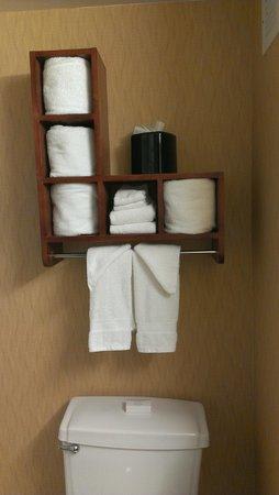 Hampton Inn Princeton : Bathroom shelves