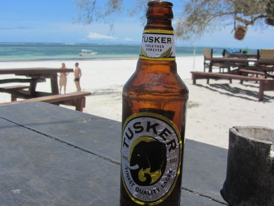 Baobab Holiday Resort: View from bar at forty thieves