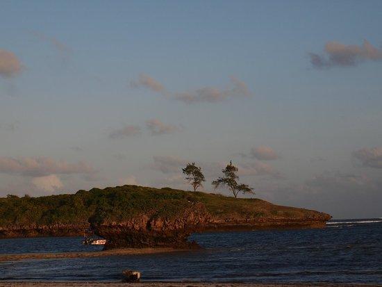 Turtle Bay Beach Club : Beach