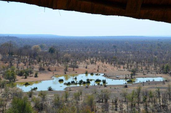 Victoria Falls Safari Lodge: view of water hole