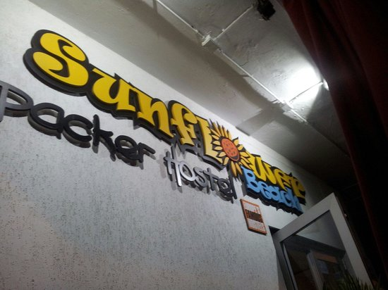 Sunflower City Backpacker Hostel & Bar: Entrata