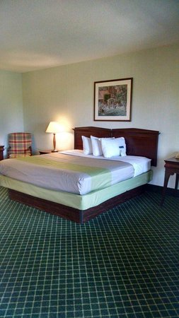 Super 8 by Wyndham Salem VA: Queen bed