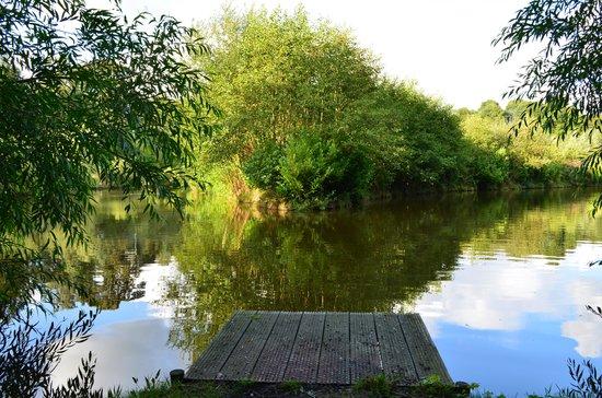 Lloyds Meadow Fishery