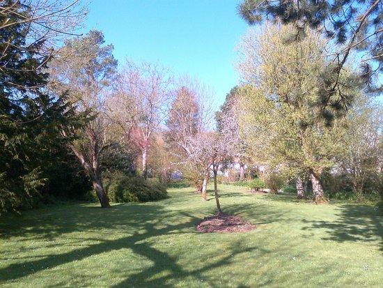 Auberge d'Inxent : Un magnifique jardin dans lequel on aime se balader avant ou après manger