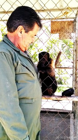 Baja Fun Adventures: pepe the monkey LOVES tony