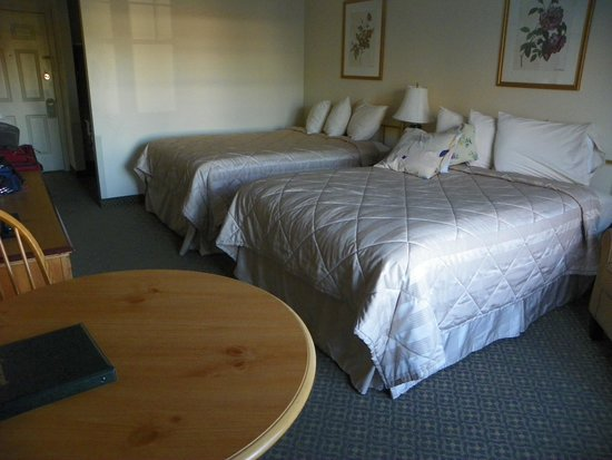 The Country Inn at the Mall: Nice clean room and comfy beds