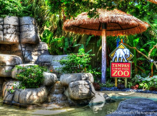 Tampa's Lowry Park Zoo : Entrance at Lowry Park Zoo